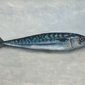 Mackeral, oil and gesso