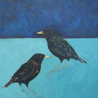 Two starlings against background of blues, acrylic