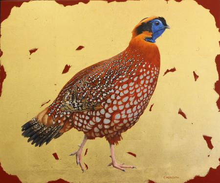 Temmincks tragopan 20 x 24 oil & 24 carat gold leaf on canvas