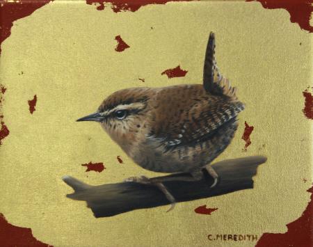 Jenny-Wren-
