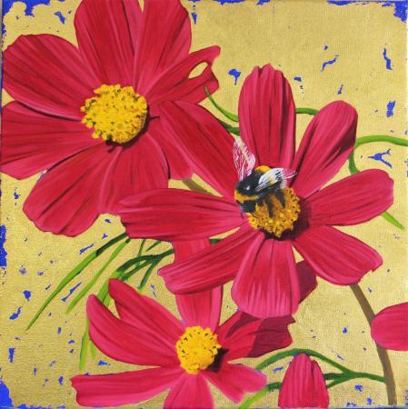 Cosmos Bumblebee 9x9