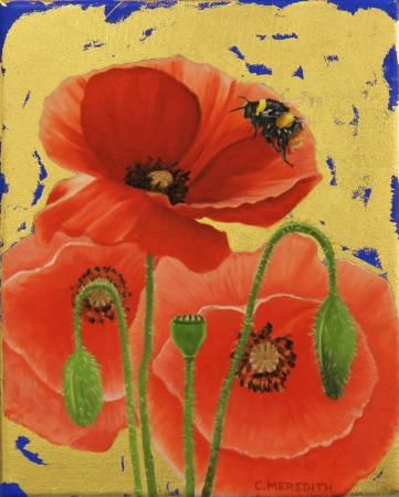 Poppies & Early Bumblebee