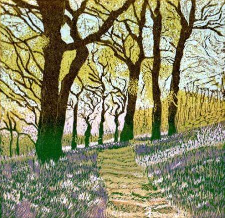 Bluebells_in_the_Oak_Wood