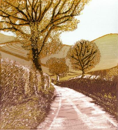 Walking_to_Colstey_Wood