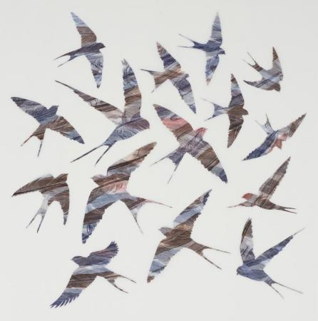As-Swift-As-Swallows-Fly-Ruth-Thomas