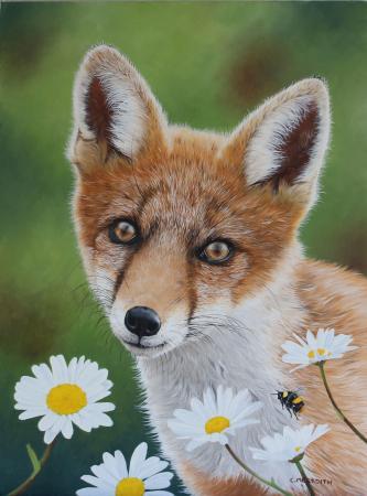 Fox-cub-&-daisies-oil-on-canvas-