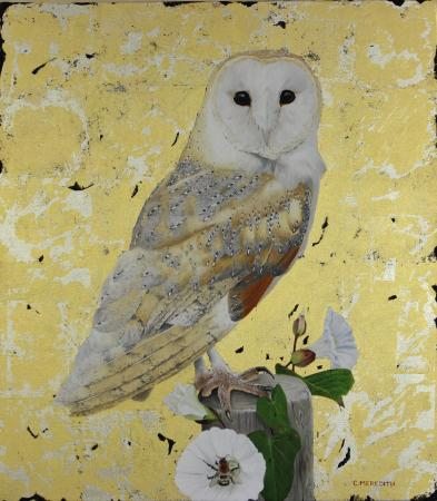 Barn-Owl-&-bindweed-17-x-15-oil,white-gold-overlayed-with-23