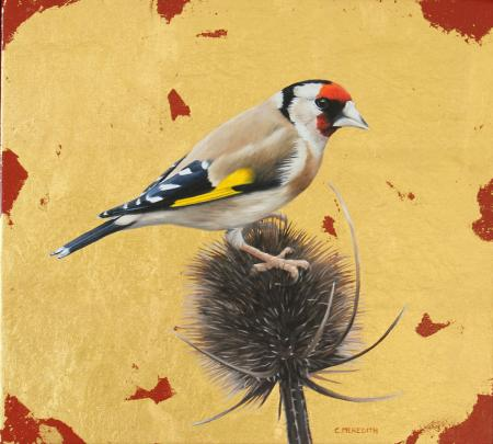 Goldfinch, gold leaf and oil