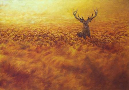 Red deer standing in vivid orange bracken in yellow light, oil