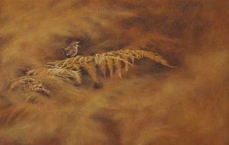 Wren sitting on autumn-brown bracken, oil