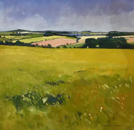 Summer fields, danbury ring, oil