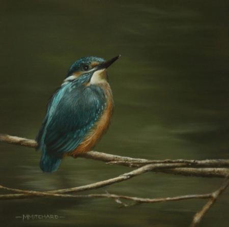 Kingfisher perching, acrylic.