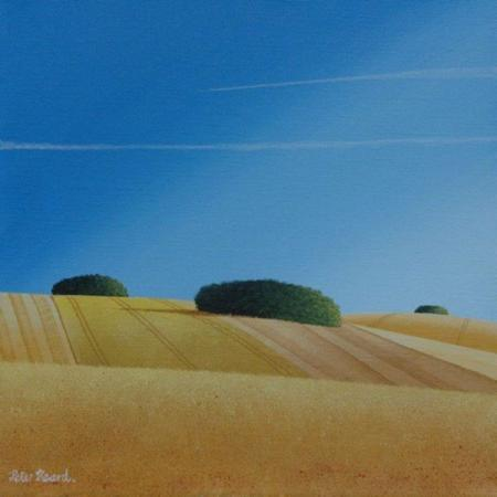 Golden fields, clumps of trees, blue sky with vapour trails, acrylic.